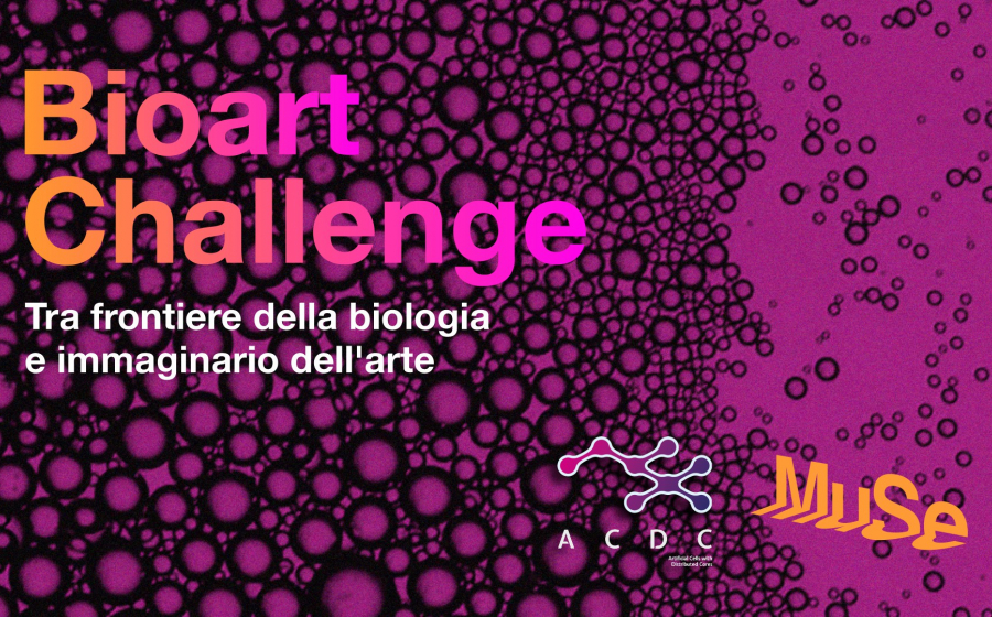 BioArt Challenge