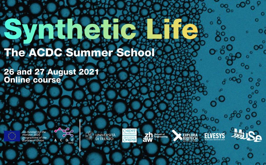ACDC Summer School